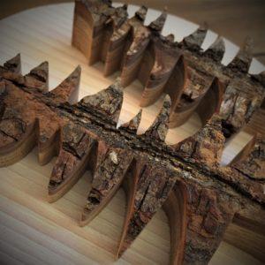 Déco cadre Sapin sur bois massif patiné